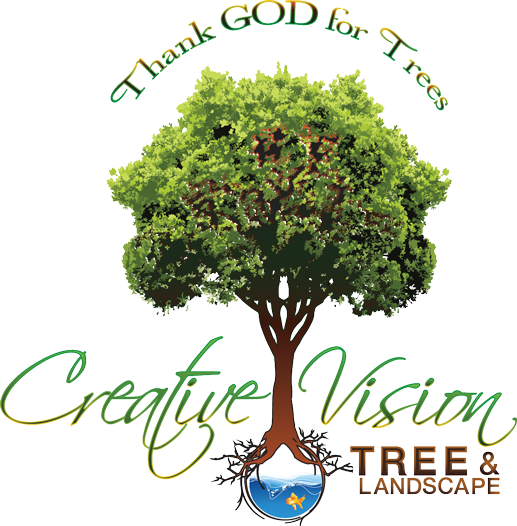 Creative Vision Tree Landscape Services Logo