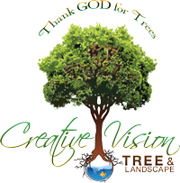 Creative Vision Tree & Landscape Services Logo